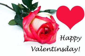 Happy Valentinsday Blumengruß Freisteller