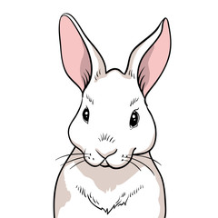 Rabbit portrait isolated