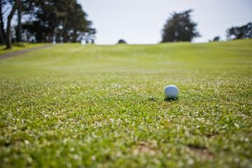 Single golf ball sitting on a golfing green