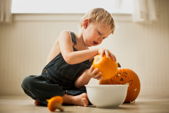 Young boy sitting cross-legged on a floor pours seeds out of a small pumpkin into a bowl with a big pumpkin with a face drawn on it in the background.