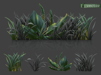 Spring. Dark green grass, 3d realistic vector icon set