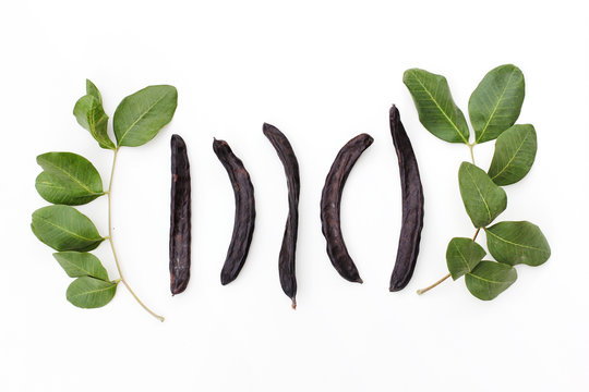 Ripe organic carob fruit pods and green leaves from locust tree on white background. Healthy alternative to cocoa and sugar