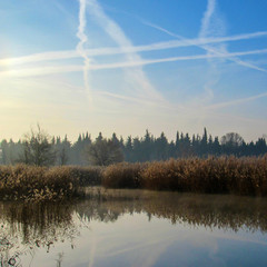 Poster Morning with fog Winter lake landscape in early winter morning with blue sky and plane tracks reflected in water
