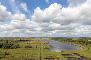 Dutch National park with heath, wetlands and cloudy sky