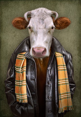 Foto op Canvas Hipster Dieren Cow in clothes. Man with a head of an cow. Concept graphic in vintage style with soft oil painting style.