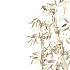 the card bamboo chinese plant. watercolor illustration