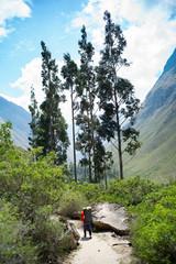 A man hikes along a trail