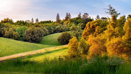 Rolling hills Jackson, California evening