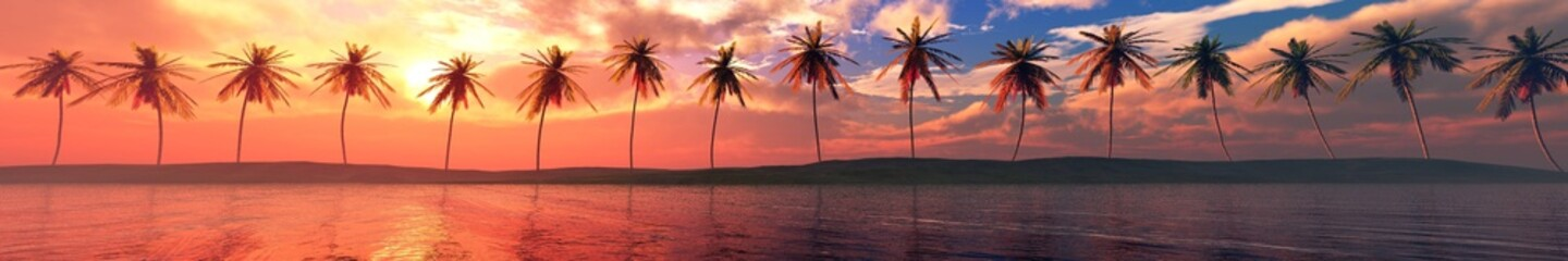 Palm trees over the water, a panorama of palm trees in a row at sunset by the sea,