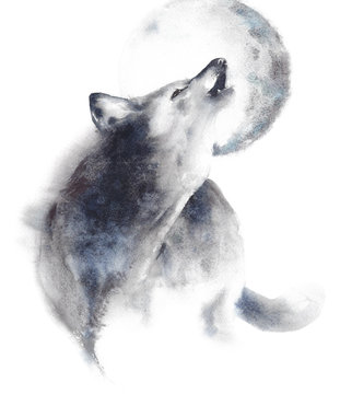 Wolf howling at moon wildlife animal watercolor painting illustration isolated on white background