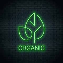 Green Leaf neon logo. Organic eco product