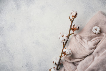 Cotton branch and blanket on light background