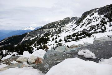Whistler Mountain I