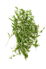 Tarragon herbs close up isolated on white background