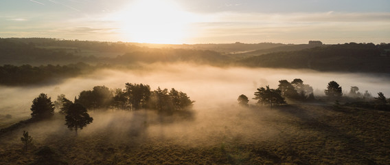 In de dag Beige Beautiful sunrise image of drone aerial view of Autumn Fall forest scene landscape