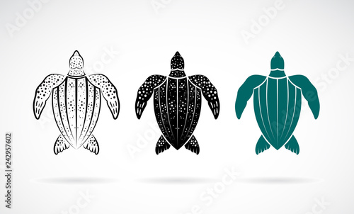 5916fd490 Vector of gooseberry turtle design on white background. Sea animals. Easy  editable layered vector illustration.