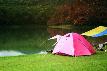 nature landscape pink camping tent under tree and colorful blue with yellow tarp on meadow with lake or river and mountain jungle with trekking for holiday relax on winter autumn red leaf at ched khot