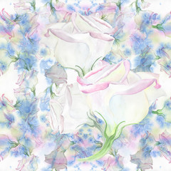 Eustoma - flowers. Watercolor. Decorative composition. Seamless background graphic. White flowers on watercolor background. Use printed materials, signs, items, websites, packaging, decoration.