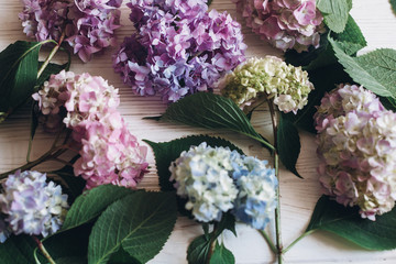 Zelfklevend Fotobehang Hydrangea Beautiful hydrangea flowers on rustic white wood, flat lay. Colorful pink,blue,green,white bouquet of hydrangea in creative composition. Hello spring. Happy mothers day. Women day