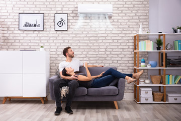 Happy Couple Operating Air Conditioner At Home
