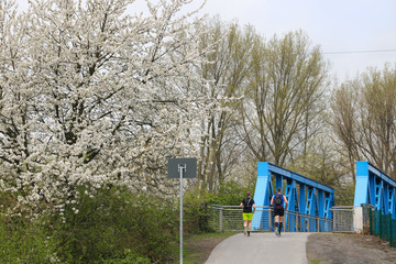 Beautiful german landscape - Nordstern Park (spread around the former Nordstern colliery), North Rhine-Westphalia