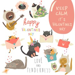 Set of vector cartoon characters cats in love theme