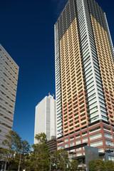Fototapete - 東池袋の高層マンションとサンシャイン60