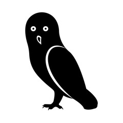 Vector image of standing owl, black and white on an isolated white background
