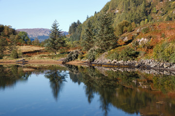 Lake with Wood in Scottish Highlands Ault a Chruinn