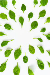 Fresh green leaves spinach isolated on a white background.