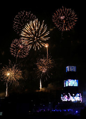 Fireworks explode during the opening ceremony for the European Capital of Culture 2019 in Plovdiv