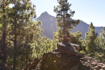 Caldera La Palma -> Hicking
