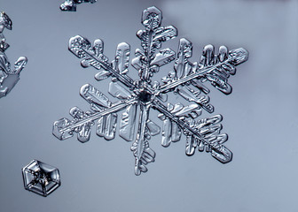 Beautiful snow flake on a light grey background close up
