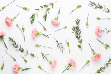 Pink carnation flowers on white background. Flat lay, top view, copy space.