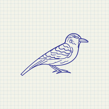 simple drawing sparrow