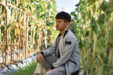 young man sitting in the corn field