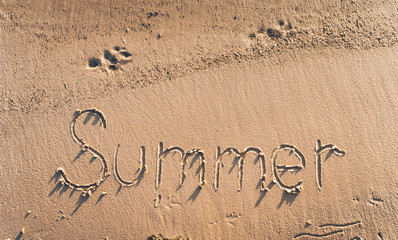 The word summer is written in the sand. Summer beach concept. Trail of dog.