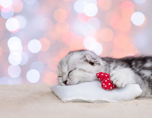 Close up baby kitten sleeping with heart on pillow on festive background