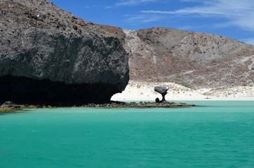 Hongo Playa Balandra en La Paz Baja California Sur