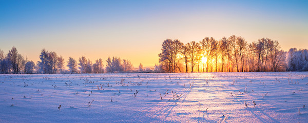 winter landscape panorama with sunrise