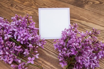 purple lilac branch on wooden background. Blank, greeting card. Natural background. Empty space