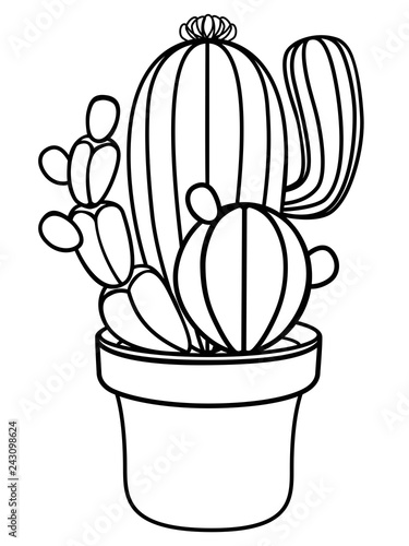 plant identification coloring pages - photo#49