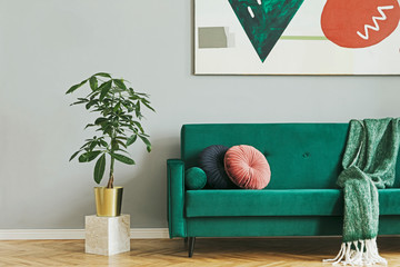 Luxury home interior with green velvet design sofa and blanket. Tropical plant in marble stand. Grey walls with abstract painting. Brown wooden parquet. Modern concept of sitting room.