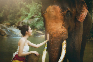 Portrait beautiful asian model with elephant. Nature background