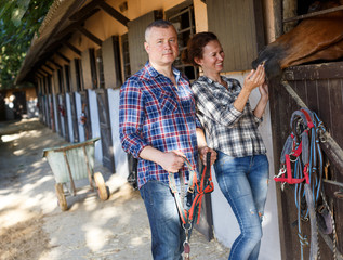 Smiling couple holding a surcingle and feeding a horse at stable outdoor