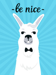 A funny llama with a bang in a bow tie smiles. Be cute fun quote. Adorable alpaca. Portrait of guanaco