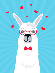 Llama in love in a bow tie and heart-shaped glasses. Valentine's Day greeting card. Adorable alpaca. Portrait of guanaco.