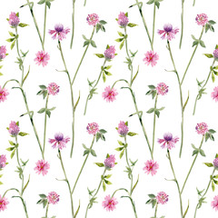 graceful seamless texture with flowers of cornflower and clovers. watercolor painting