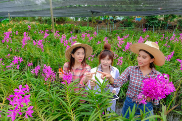 Researchers, young women wearing white dresses and orchid garden owners are collaborating to inspect orchids and save changes to improve orchid species.