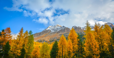 Dolomites Mountains, autumn landscape in the The Martello valley in South Tyrol in the Stelvio National Park, Alps, northern Italy, Europe. Beauty of nature concept background.
